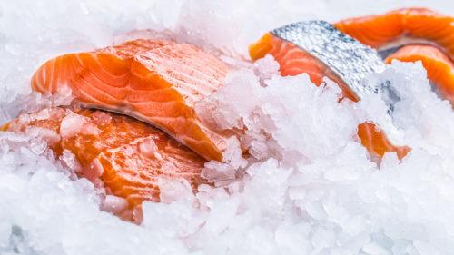 exportación productos del mar